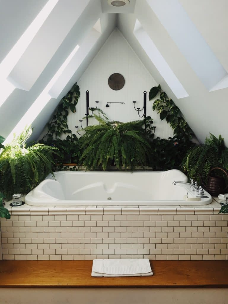 bathtub surrounded by greenery