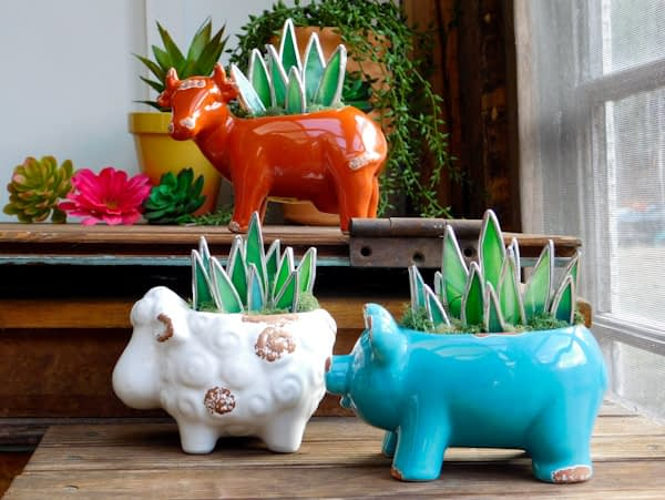Stained Glass Succulents in Cow Pig Sheep Planter Pots